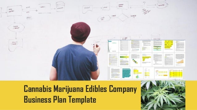 cannabis edibles business plan