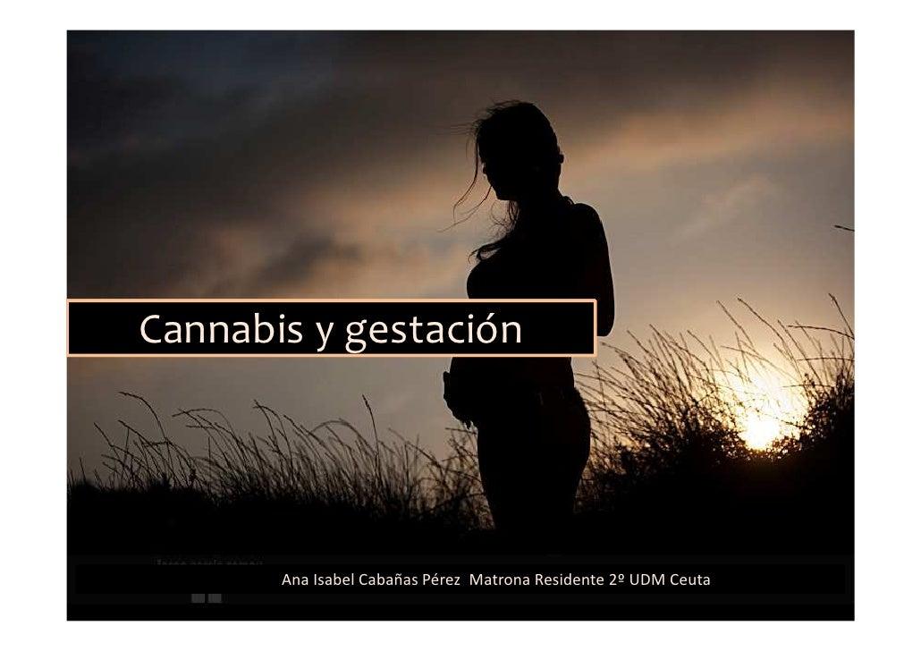 Cannabis y gestación