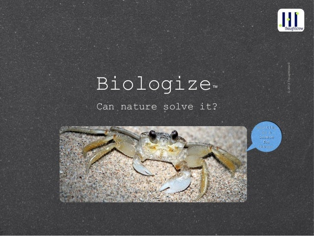 © 2013 Thoughtcrew®Biologize          ™Can nature solve it?                       Moulting                       Moulting ...