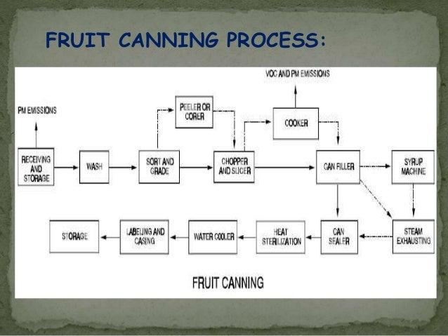 fruit juice production process pdf
