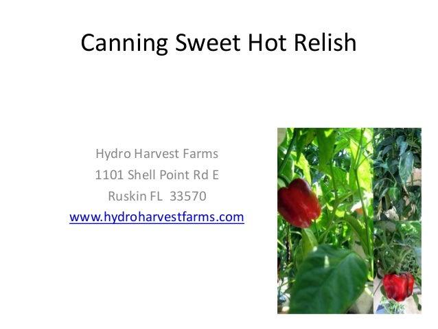 Canning Sweet Hot RelishHydro Harvest Farms1101 Shell Point Rd ERuskin FL 33570www.hydroharvestfarms.com