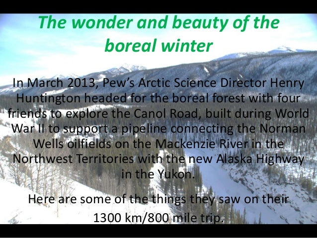 The wonder and beauty of the            boreal winter In March 2013, Pew's Arctic Science Director Henry  Huntington heade...