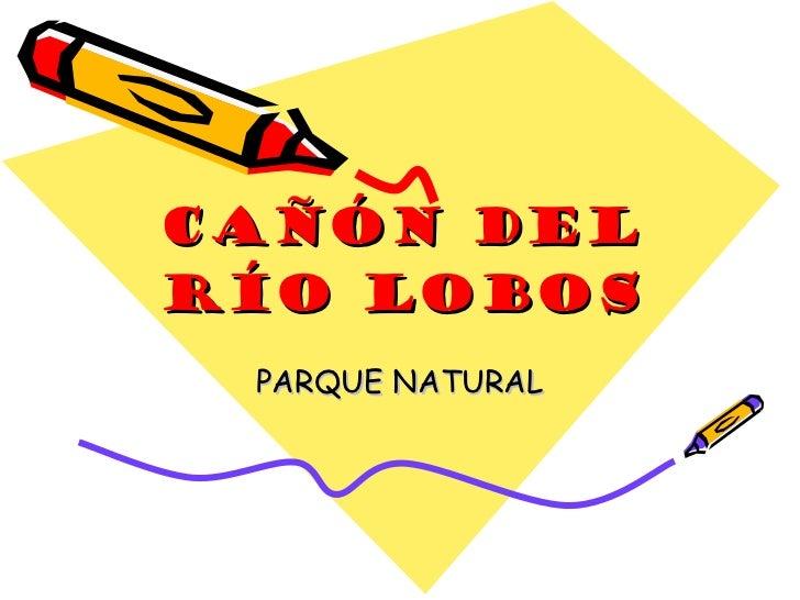 Cañón del río lobos PARQUE NATURAL