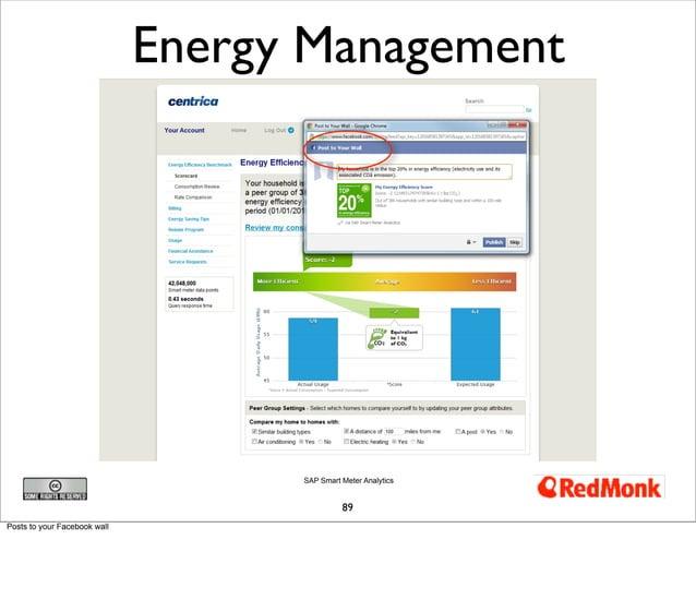 Energy Management                                    SAP Smart Meter Analytics                                            ...