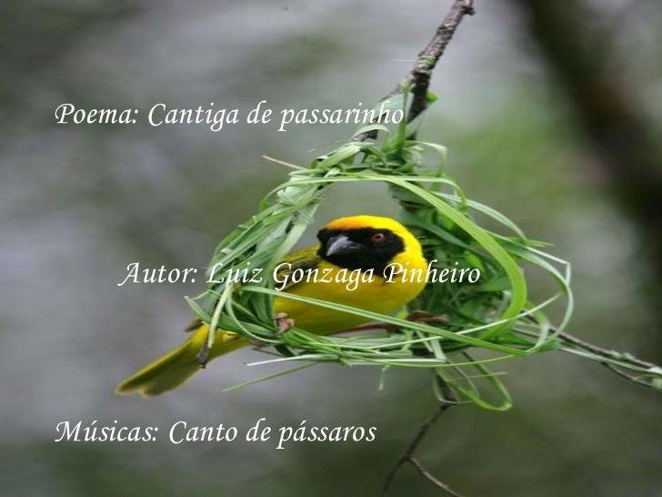 Poema: Cantiga de passarinho     Autor: Luiz Gonzaga PinheiroMúsicas: Canto de pássaros