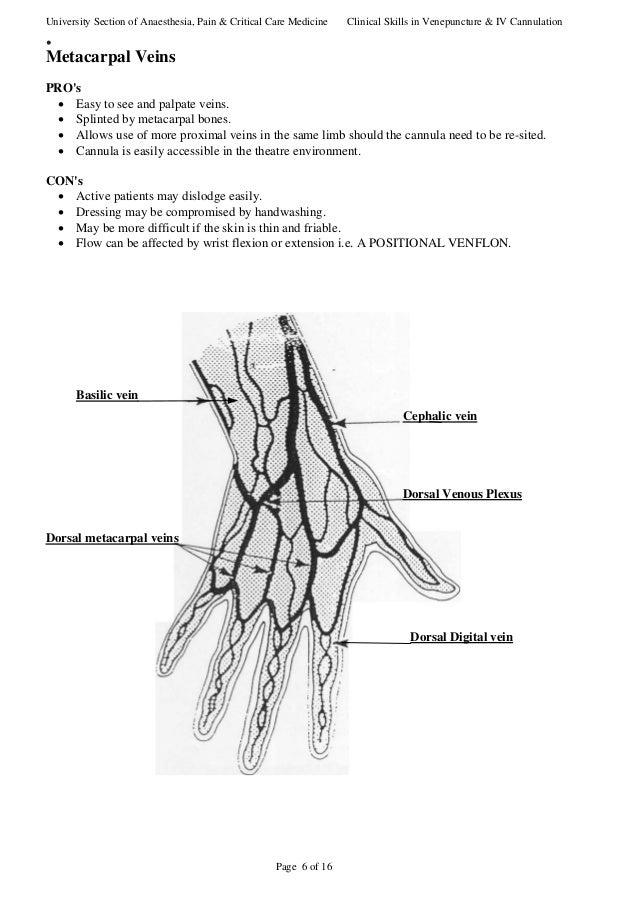 canulisation 1, Cephalic Vein