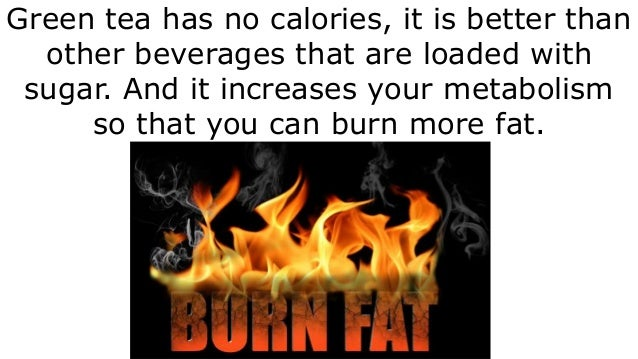 b6 fat burner