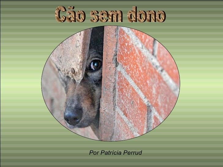 Cão sem dono Por Patrícia Perrud