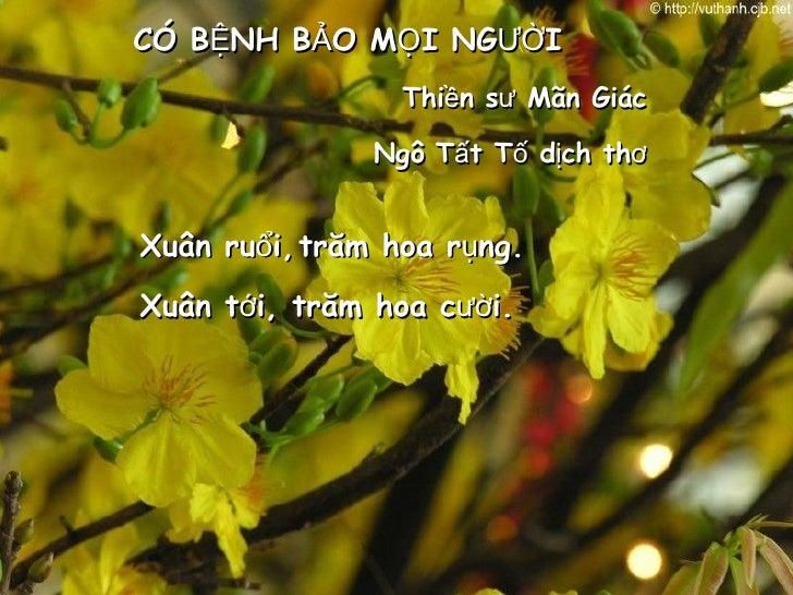 Xuân ruổi,  CÓ BỆNH BẢO MỌI NGƯỜI Thiền sư Mãn Giác Ngô Tất Tố dịch thơ trăm hoa rụng. Xuân tới,  trăm hoa cười.
