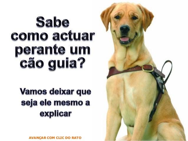 AVANÇAR COM CLIC DO RATO