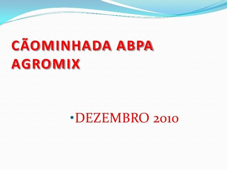CÃOMINHADA ABPAAGROMIX<br />DEZEMBRO 2010<br />