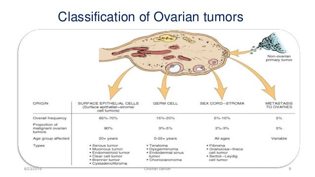 a description of ovarian cancer of all gynecological malignancies O varian cancer remains the deadliest gynecologic malignancy in 2007,an estimated 22,430 patients will be diagnosed in the united states while an estimated 15,280.