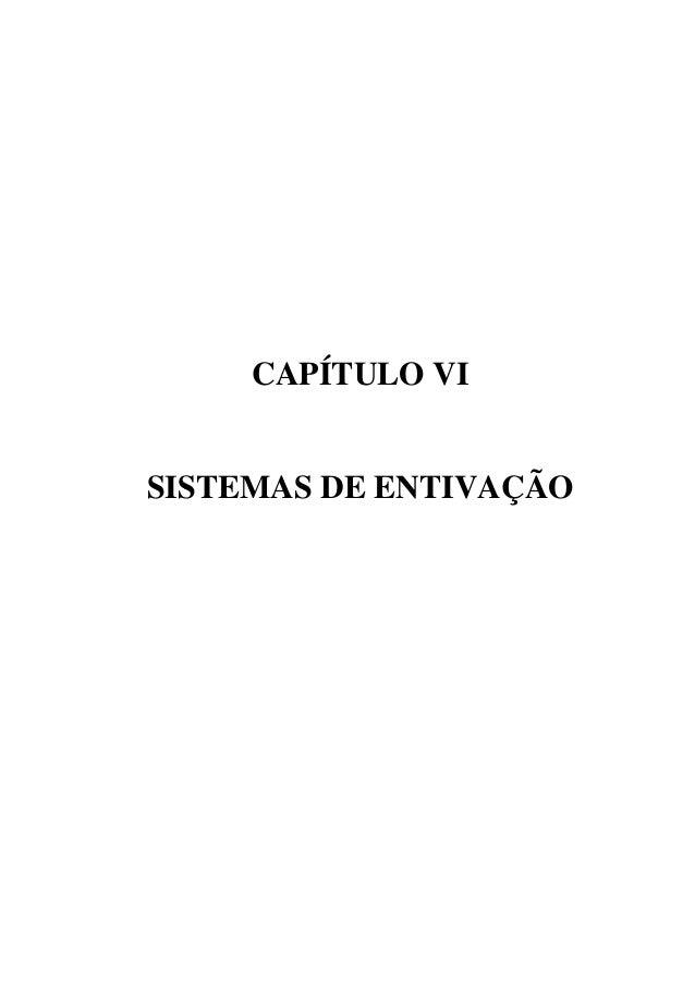 CAPÍTULO VI SISTEMAS DE ENTIVAÇÃO