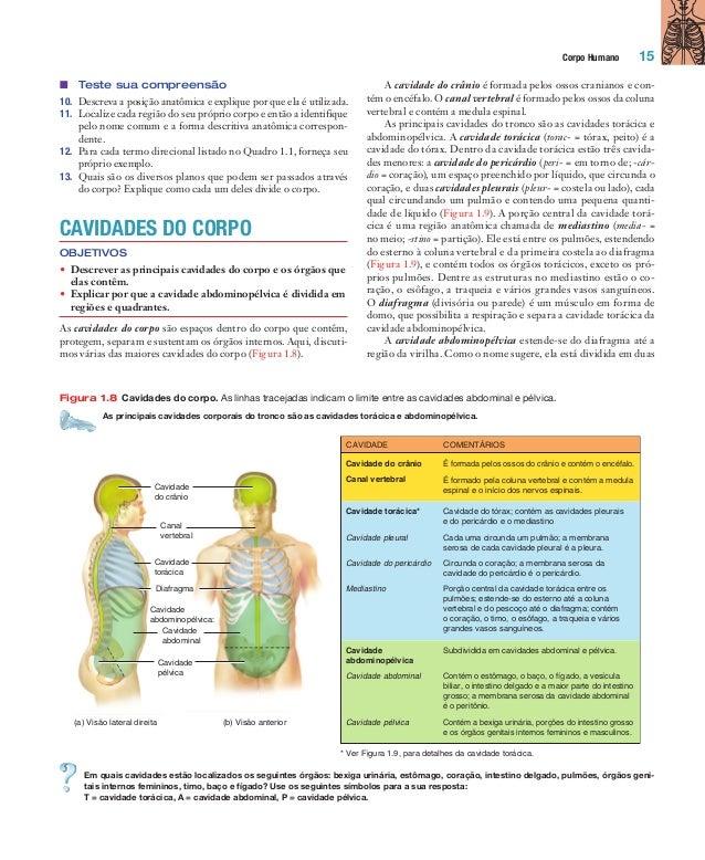 Descreva a posição anatomica