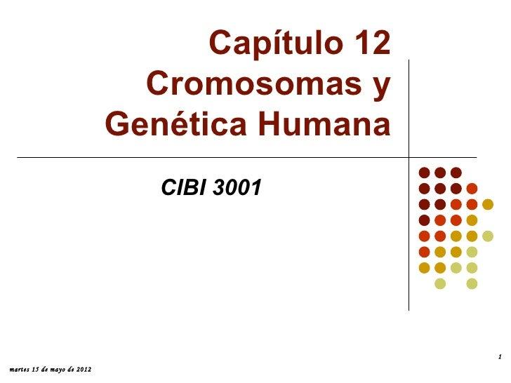 Capítulo 12                              Cromosomas y                            Genética Humana                          ...