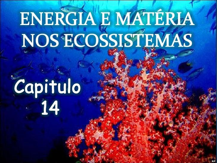 ENERGIA E MATÉRIA NOS ECOSSISTEMAS<br />Capitulo<br /> 14<br />