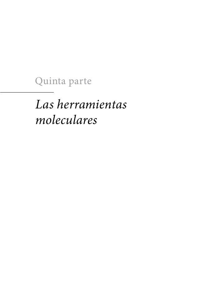 Quinta parteLas herramientasmoleculares