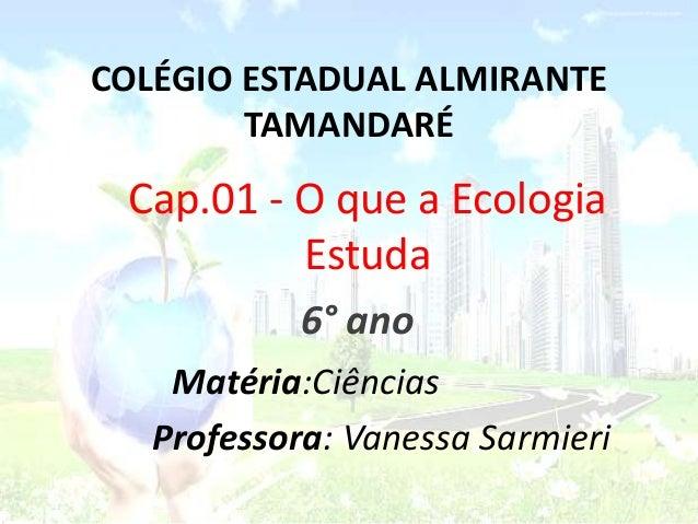 Cap.01 - O que a Ecologia Estuda COLÉGIO ESTADUAL ALMIRANTE TAMANDARÉ 6° ano Matéria:Ciências Professora: Vanessa Sarmieri