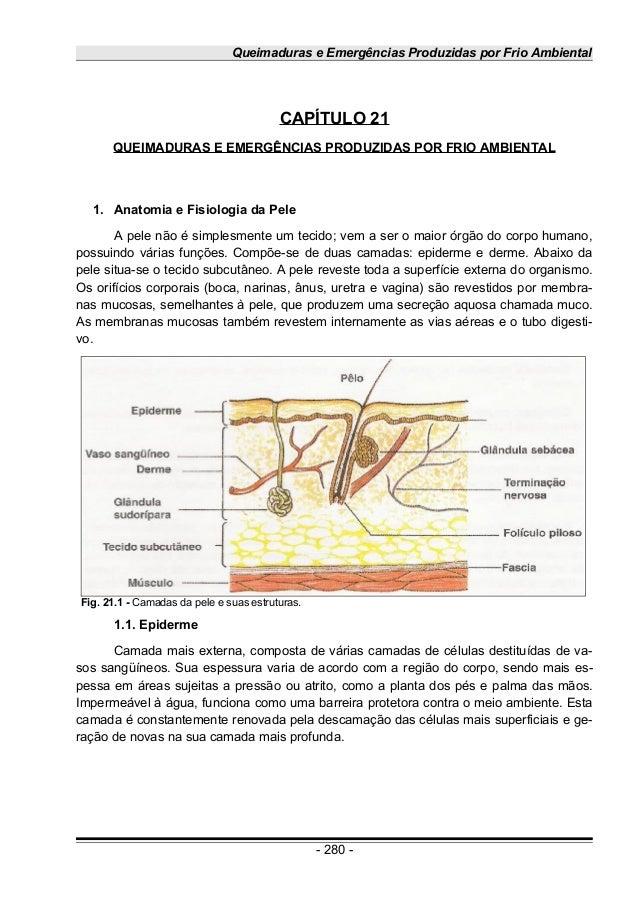 Queimaduras e Emergências Produzidas por Frio Ambiental CAPÍTULO 21 QUEIMADURAS E EMERGÊNCIAS PRODUZIDAS POR FRIO AMBIENTA...