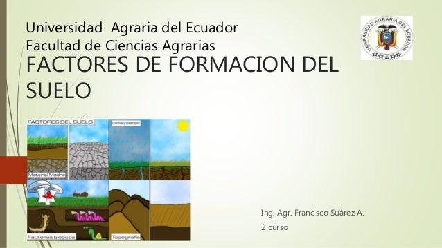 Factores de formaci n de los suelos for Proceso de formacion del suelo
