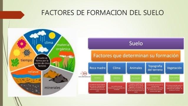 factores de formaci n de los suelos