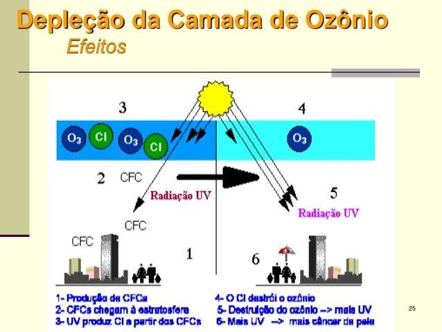 25 Depleção da Camada de Ozônio Efeitos