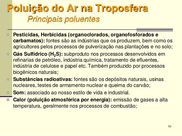 53 Poluição do Ar na Troposfera Principais poluentes  Pesticidas, Herbicidas (organoclorados, organofosforados e carbamat...