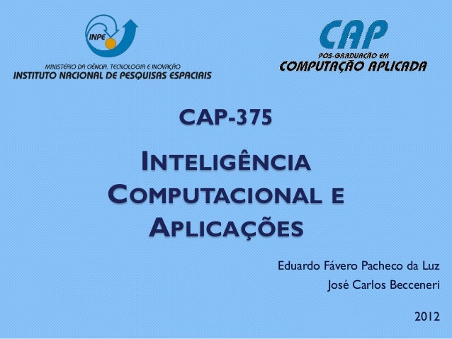 CAP-375  INTELIGÊNCIACOMPUTACIONAL E  APLICAÇÕES              Eduardo Fávero Pacheco da Luz                       José Car...