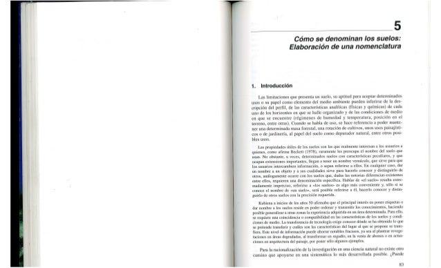 _ ' 5  Cómo se denominan los suelos:  Elaboración de una nomenclatura  1. Introducción  Las limitaciones que presenta un s...