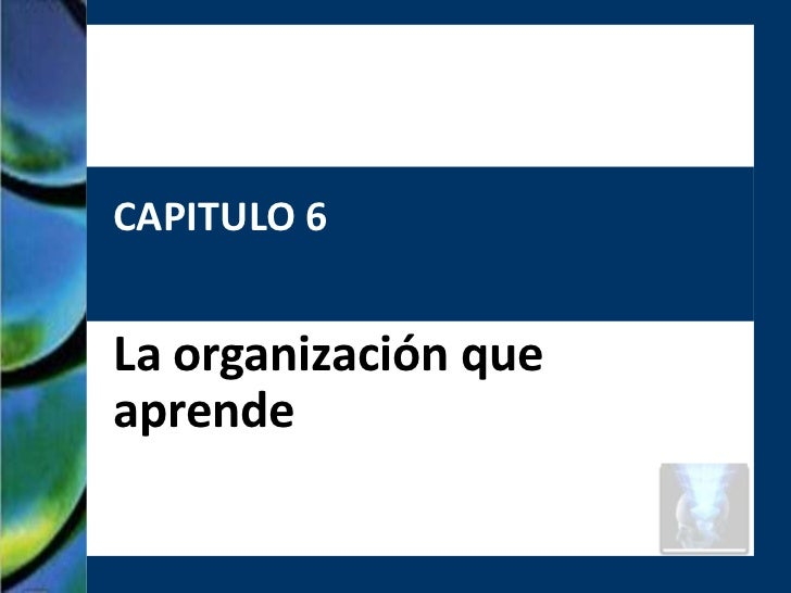 CAPITULO 6La organización queaprende