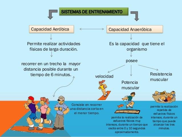 Diferencia Entre Resistencia Aerobica Y Anaerobica Tipos De Gimnasia