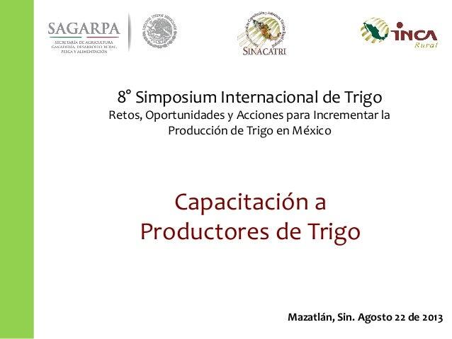 Capacitación a Productores de Trigo Mazatlán, Sin. Agosto 22 de 2013 8° Simposium Internacional de Trigo Retos, Oportunida...
