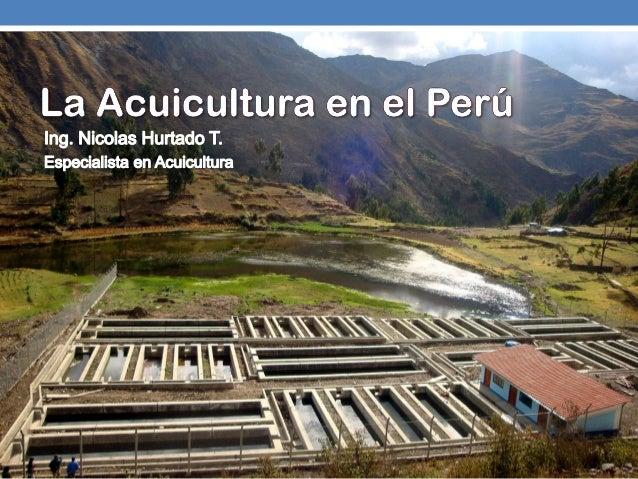 Agenda:Acuicultura: Un panorama general y comparado a Ecuador.Especies que se producen (en porcentajes de participación)Le...