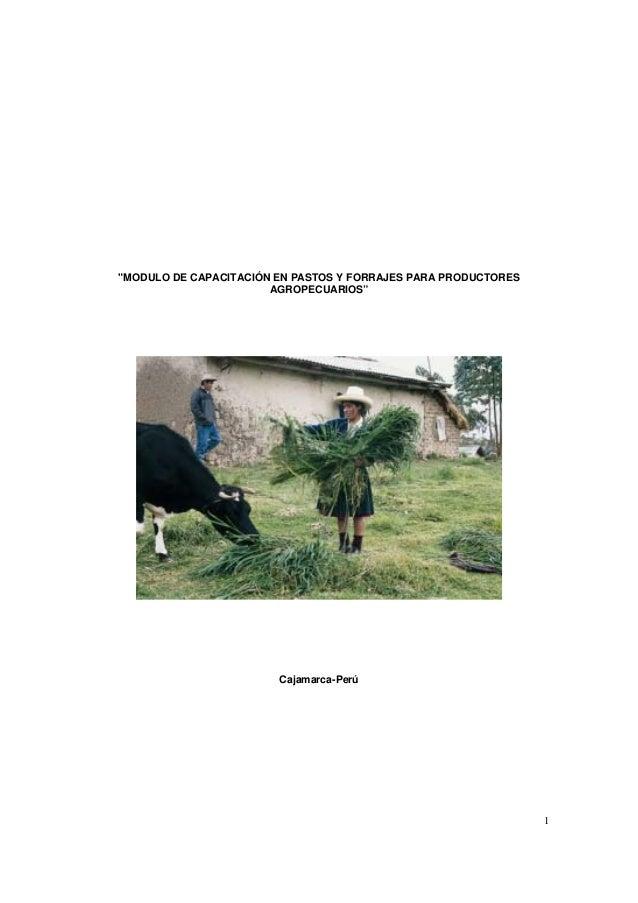 """1 """"MODULO DE CAPACITACIÓN EN PASTOS Y FORRAJES PARA PRODUCTORES AGROPECUARIOS"""" Cajamarca-Perú"""
