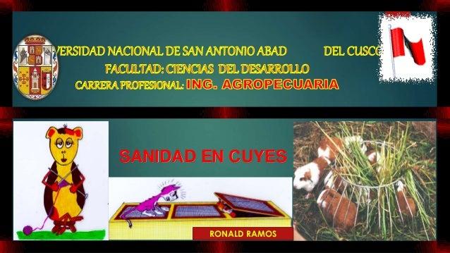 SANIDAD EN CUYES RONALD RAMOS