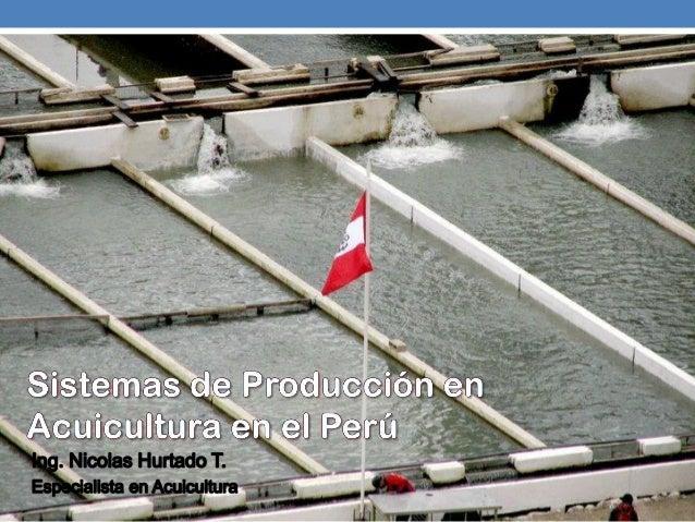 Agenda:AntecedentesSistemas de Producción en AcuiculturaSistema de Producción para LangostinosSistema de Producción para T...