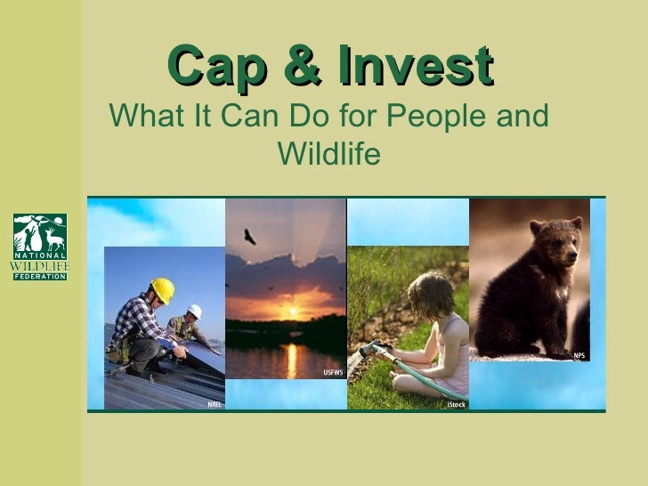 Cap & Invest What It Can Do for People and Wildlife