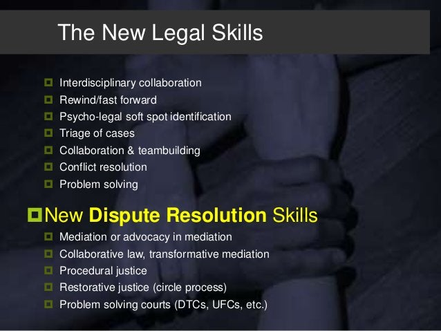 The Multi-Dimensional Lawyer  Designer  Problem Solver In addition to:  Fighter