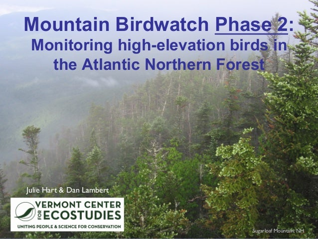 Mountain Birdwatch Phase 2: Monitoring high-elevation birds in the Atlantic Northern Forest Julie Hart & Dan Lambert Sugar...