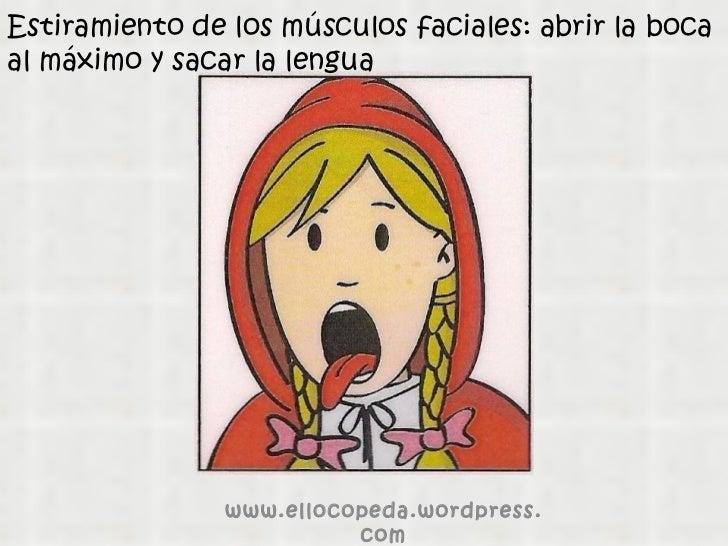 Estiramiento de los músculos faciales: abrir la boca al máximo y sacar la lengua www.ellocopeda.wordpress.com