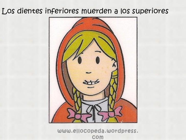 Los dientes inferiores muerden a los superiores www.ellocopeda.wordpress.com