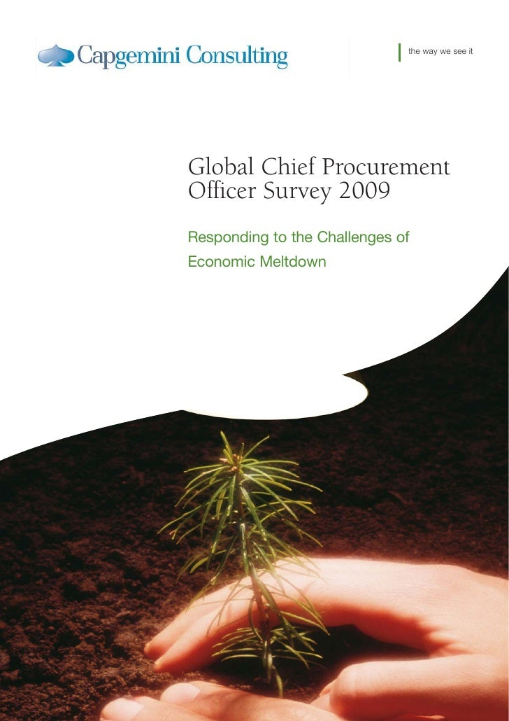 the way we see it     Global Chief Procurement Officer Survey 2009 Responding to the Challenges of Economic Meltdown