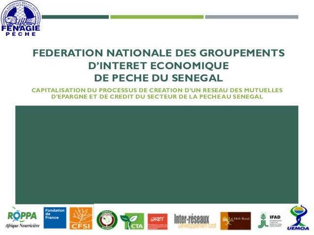 FEDERATION NATIONALE DES GROUPEMENTS D'INTERET ECONOMIQUE DE PECHE DU SENEGAL CAPITALISATION DU PROCESSUS DE CREATION D'UN...