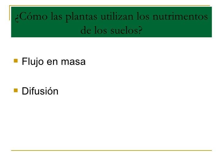 ¿Cómo las plantas utilizan los nutrimentos de los suelos? <ul><li>Flujo en masa </li></ul><ul><li>Difusión </li></ul>