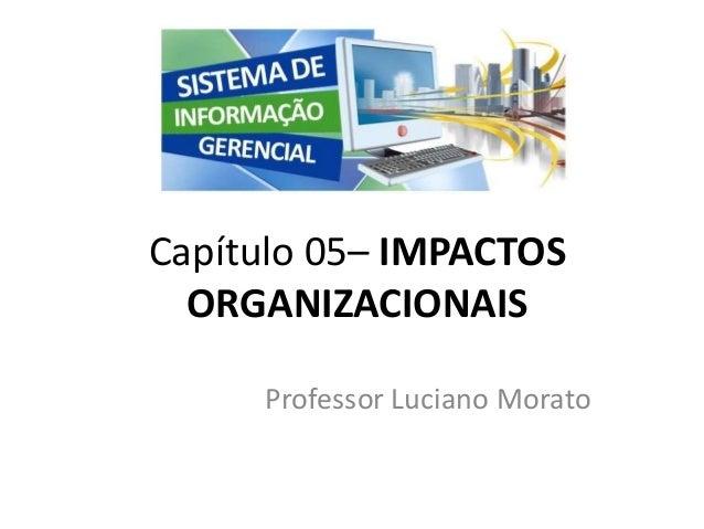 Professor Luciano Morato Capítulo 05– IMPACTOS ORGANIZACIONAIS