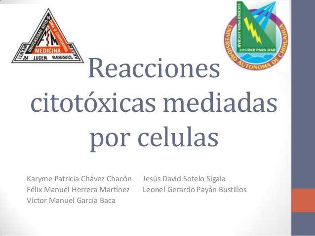 Reacciones citotóxicas mediadas por celulas Karyme Patricia Chávez Chacón Félix Manuel Herrera Martínez Víctor Manuel Garc...