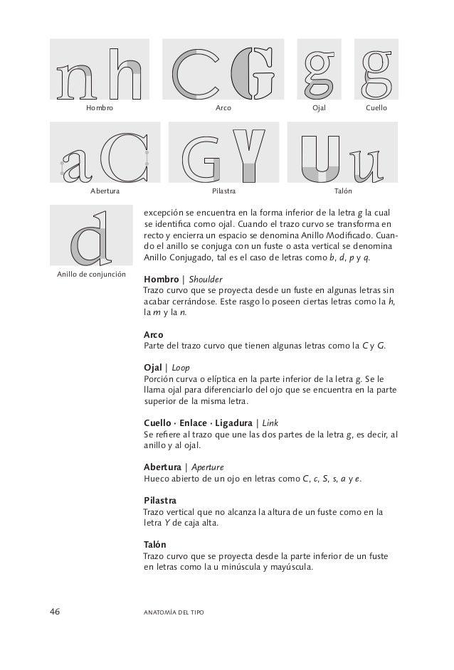 Único Anatomía Del Tipo De Letra Composición - Imágenes de Anatomía ...