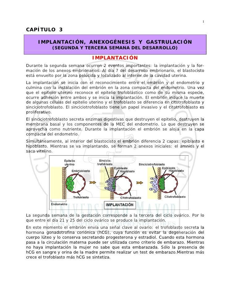 1  CAPÍTULO 3        IMPLANTACIÓN, ANEXOGÉNESIS Y GASTRULACIÓN              (SEGUNDA Y TERCERA SEMANA DEL DESARROLLO)     ...