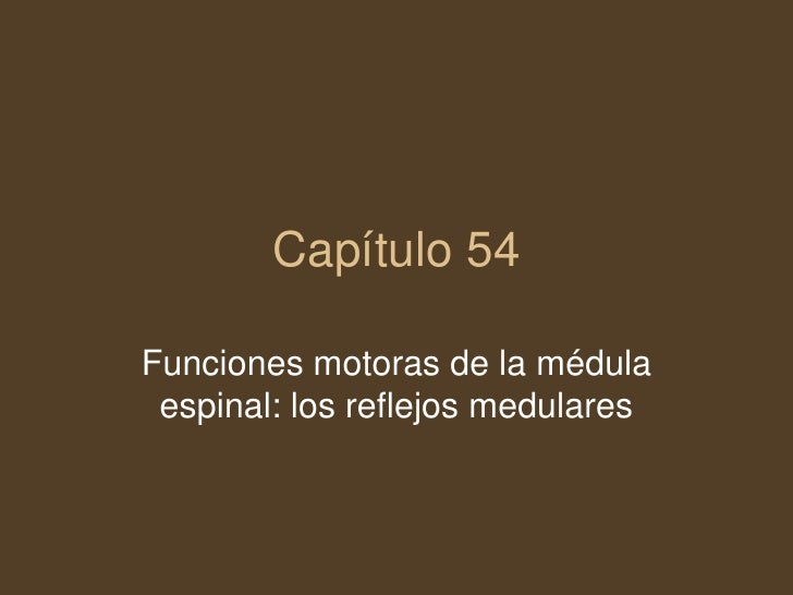 Capítulo 54<br />Funciones motoras de la médula espinal: los reflejos medulares<br />