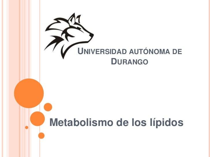 Universidad autónoma de Durango<br />Metabolismo de los lípidos<br />